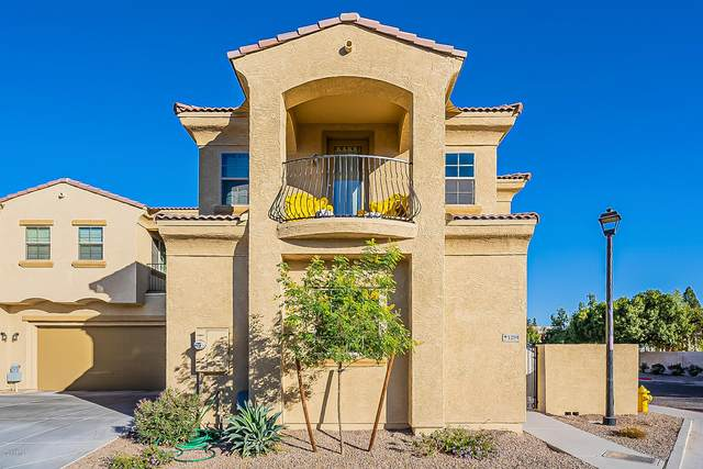 1367 S Country Club Drive #1259, Mesa, AZ 85210 (MLS #6166040) :: Kepple Real Estate Group