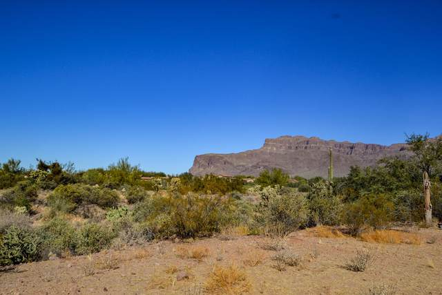 3466 S First Water Trail, Gold Canyon, AZ 85118 (MLS #6166089) :: The Helping Hands Team