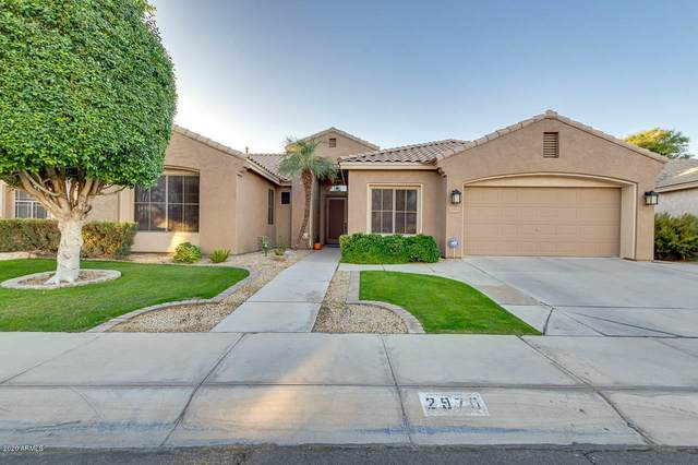2970 S Iowa Street, Chandler, AZ 85286 (MLS #6166134) :: Long Realty West Valley