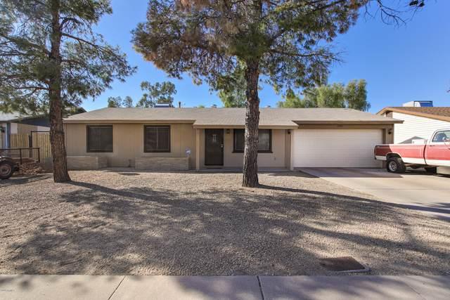 13446 N 36TH Place, Phoenix, AZ 85032 (MLS #6166264) :: The Riddle Group