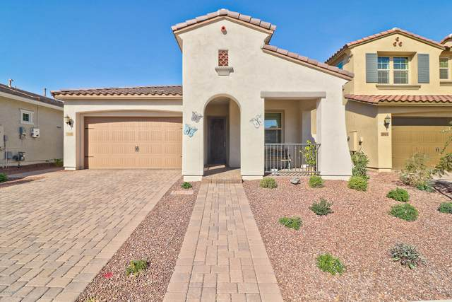 20606 W Briarwood Drive, Buckeye, AZ 85396 (MLS #6166267) :: Openshaw Real Estate Group in partnership with The Jesse Herfel Real Estate Group