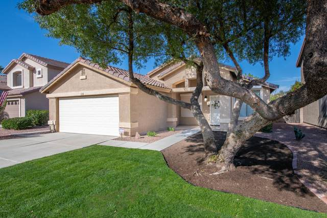 15956 W Tasha Drive, Surprise, AZ 85374 (MLS #6166282) :: The Helping Hands Team