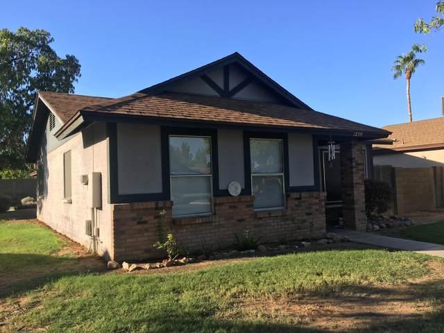 5135 E Evergreen Street #1239, Mesa, AZ 85205 (MLS #6166322) :: Walters Realty Group
