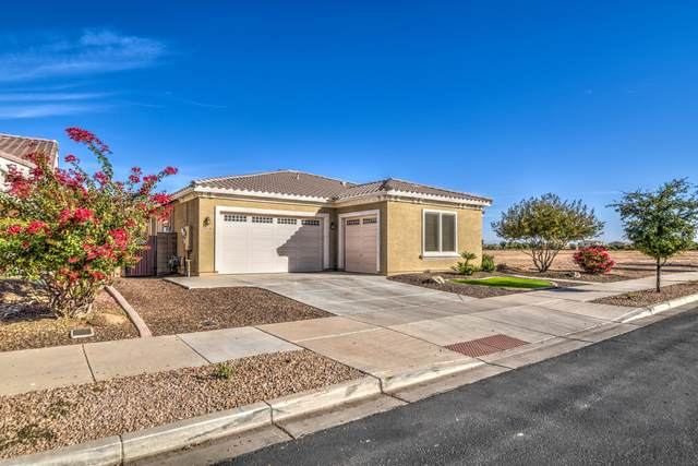 20996 E Via De Arboles, Queen Creek, AZ 85142 (MLS #6166327) :: Walters Realty Group