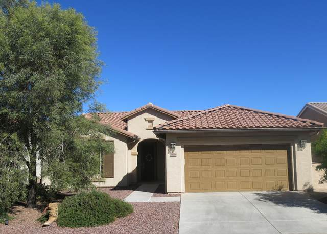 5184 W Buckskin Drive, Eloy, AZ 85131 (MLS #6166363) :: Yost Realty Group at RE/MAX Casa Grande