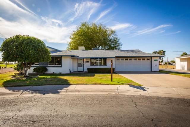 11630 N Thunderbird Road, Sun City, AZ 85351 (MLS #6166371) :: The W Group