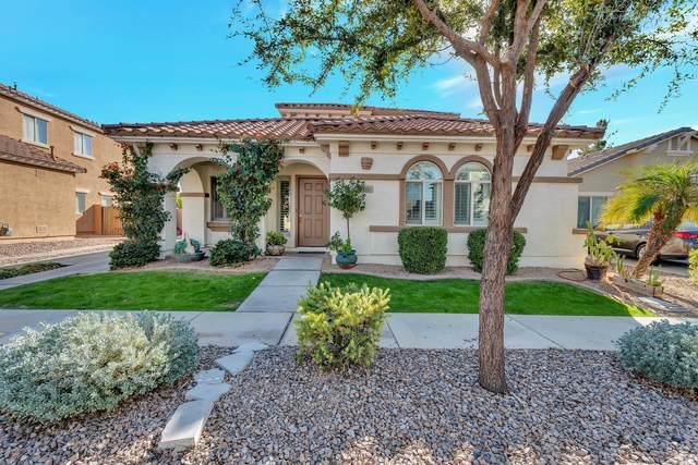 875 E Waterview Place, Chandler, AZ 85249 (MLS #6166393) :: Homehelper Consultants