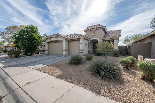 2441 W Shackleton Drive, Phoenix, AZ 85086 (MLS #6166406) :: Arizona Home Group