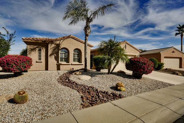 15412 W Moonlight Way, Surprise, AZ 85374 (MLS #6166407) :: The Helping Hands Team