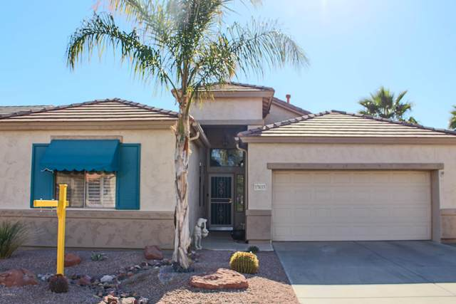 17633 W Babbit Drive, Surprise, AZ 85374 (MLS #6166464) :: The W Group