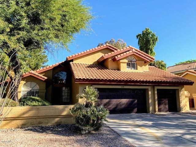 7678 E Windrose Drive, Scottsdale, AZ 85260 (MLS #6166482) :: The Kurek Group