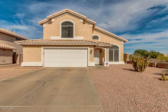 1002 W Aire Libre Avenue, Phoenix, AZ 85023 (MLS #6166518) :: The Kurek Group