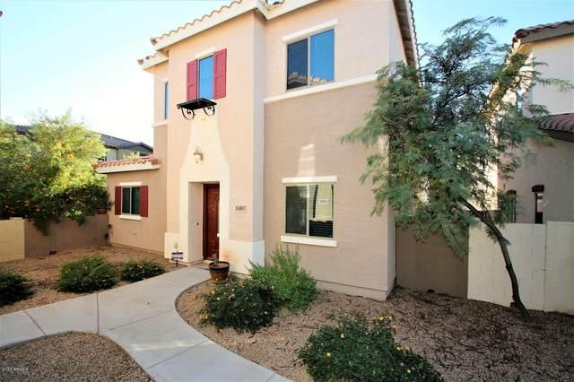 14897 W Ashland Avenue, Goodyear, AZ 85395 (MLS #6166531) :: The Helping Hands Team