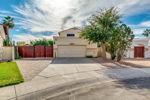 4401 W Taro Drive, Glendale, AZ 85308 (MLS #6166554) :: The W Group