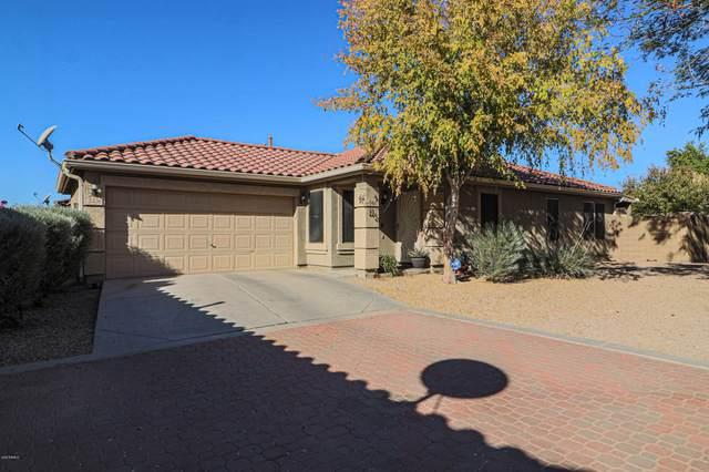 2336 E Palm Beach Drive, Chandler, AZ 85249 (MLS #6166567) :: The Copa Team | The Maricopa Real Estate Company