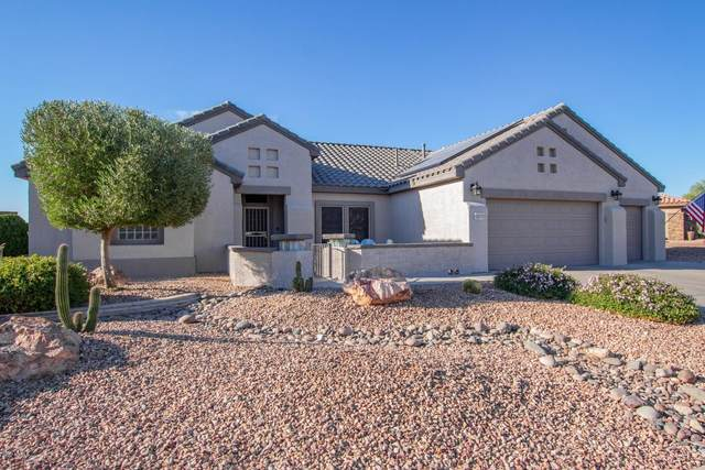 16375 W Chaparral Lane, Surprise, AZ 85374 (MLS #6166608) :: The Helping Hands Team