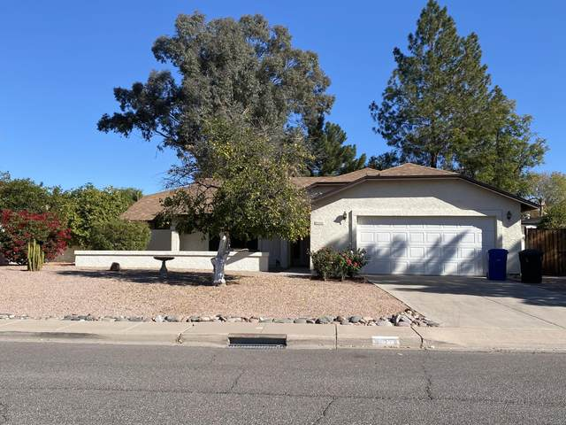 819 N Yale, Mesa, AZ 85213 (MLS #6166611) :: My Home Group