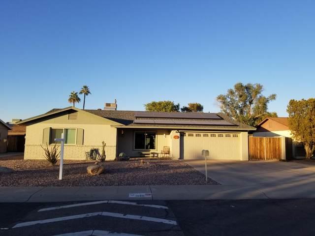 3958 W Paradise Drive, Phoenix, AZ 85029 (MLS #6166614) :: Dave Fernandez Team | HomeSmart