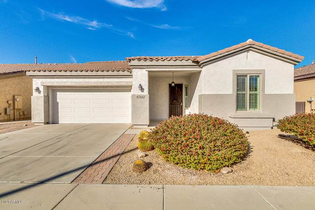 4758 E Narrowleaf Drive, Gilbert, AZ 85298 (MLS #6166615) :: Scott Gaertner Group