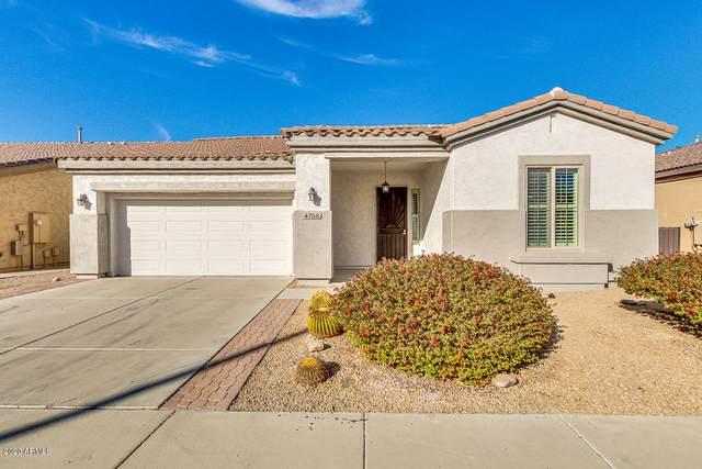 4758 E Narrowleaf Drive, Gilbert, AZ 85298 (MLS #6166615) :: The Copa Team | The Maricopa Real Estate Company