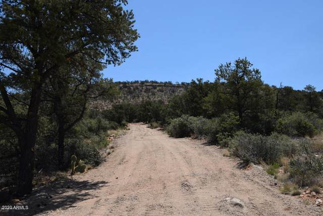 627G N Indian Ruins Road, Prescott, AZ 86301 (MLS #6166626) :: Kepple Real Estate Group