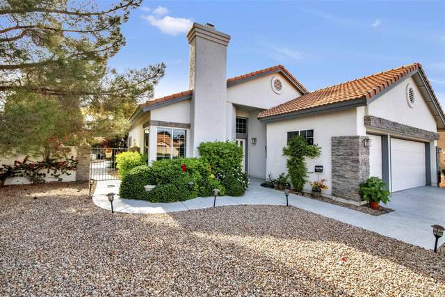 10435 E Nacoma Drive, Sun Lakes, AZ 85248 (MLS #6166642) :: The Copa Team | The Maricopa Real Estate Company