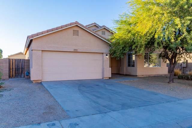 6816 S 33RD Avenue, Phoenix, AZ 85041 (MLS #6166659) :: Dave Fernandez Team | HomeSmart