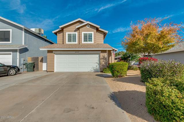4442 W Oraibi Drive, Glendale, AZ 85308 (MLS #6166703) :: Homehelper Consultants