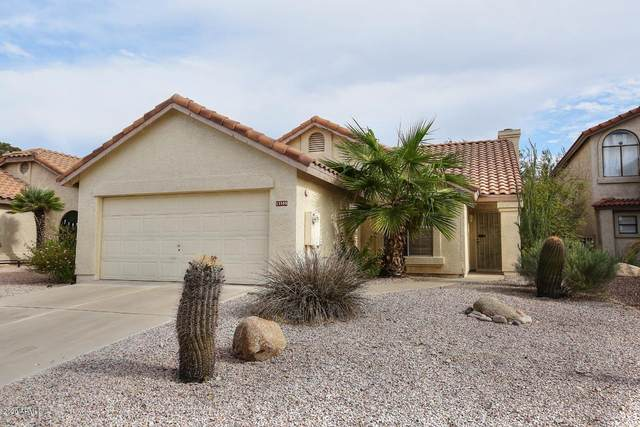 13505 N 103RD Way, Scottsdale, AZ 85260 (MLS #6166704) :: The Riddle Group