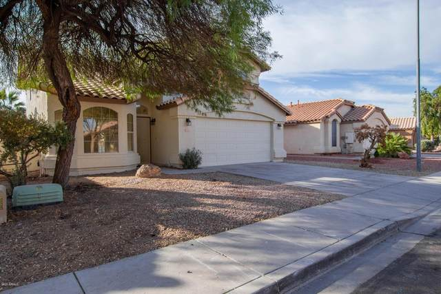 12529 W Windsor Avenue, Avondale, AZ 85392 (MLS #6166819) :: Midland Real Estate Alliance