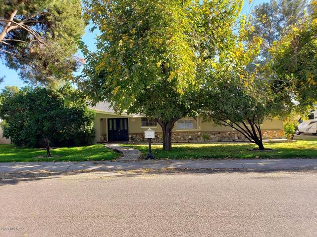 8427 N 17TH Avenue, Phoenix, AZ 85021 (MLS #6166825) :: Homehelper Consultants