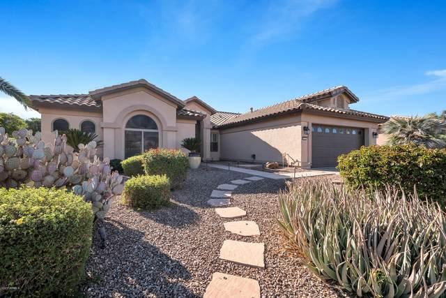 3618 N 159TH Avenue, Goodyear, AZ 85395 (MLS #6166856) :: Yost Realty Group at RE/MAX Casa Grande