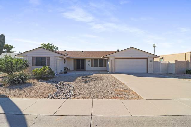10213 W Desert Rock Drive, Sun City, AZ 85351 (MLS #6166876) :: Yost Realty Group at RE/MAX Casa Grande