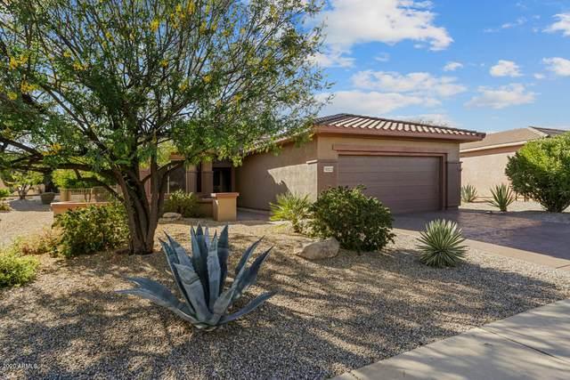 16923 W Eureka Springs Drive, Surprise, AZ 85387 (MLS #6166878) :: Sheli Stoddart Team | M.A.Z. Realty Professionals