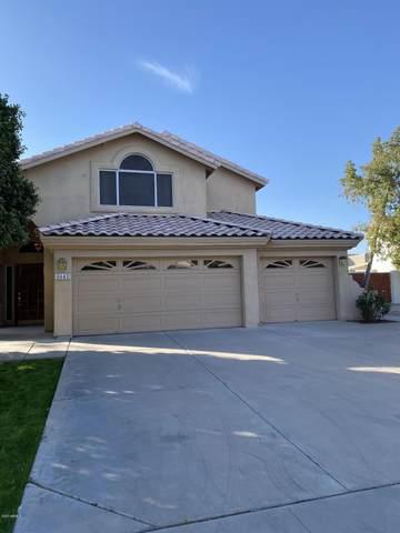 8642 S Taylor Drive, Tempe, AZ 85284 (MLS #6166887) :: The Copa Team | The Maricopa Real Estate Company