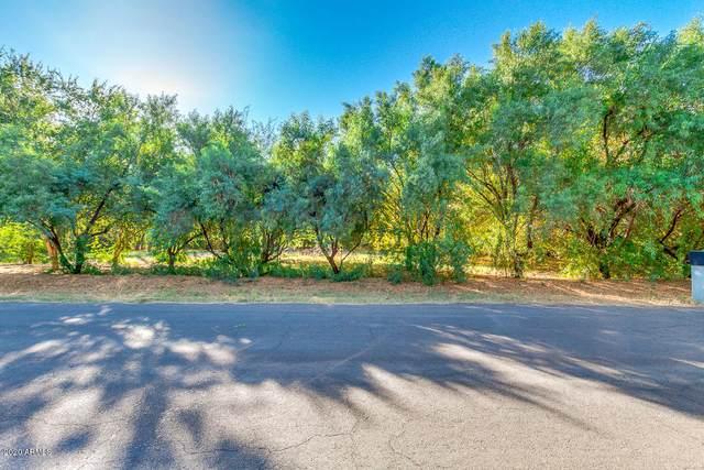 1301 E Sage Brush Street, Gilbert, AZ 85296 (MLS #6166931) :: The Copa Team | The Maricopa Real Estate Company
