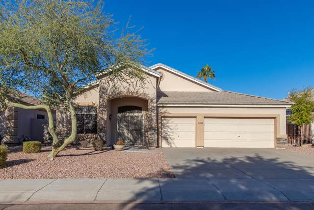 8028 W Tonopah Drive, Peoria, AZ 85382 (MLS #6166951) :: Midland Real Estate Alliance