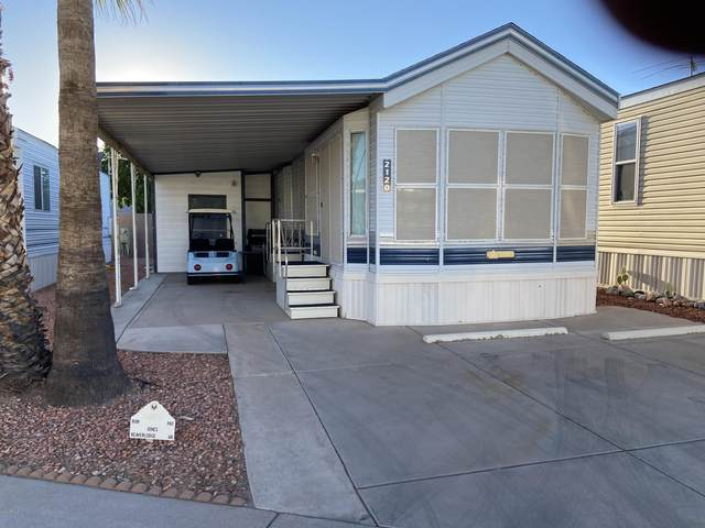 2120 S Cherokee Avenue, Apache Junction, AZ 85119 (MLS #6166952) :: The Everest Team at eXp Realty