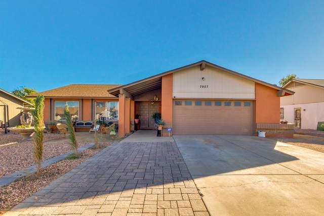 7907 W Catalina Drive, Phoenix, AZ 85033 (MLS #6166961) :: The Copa Team | The Maricopa Real Estate Company