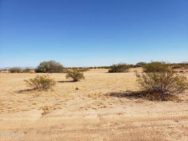 xxxx W Willetta Street, Tonopah, AZ 85354 (MLS #6166984) :: Nate Martinez Team