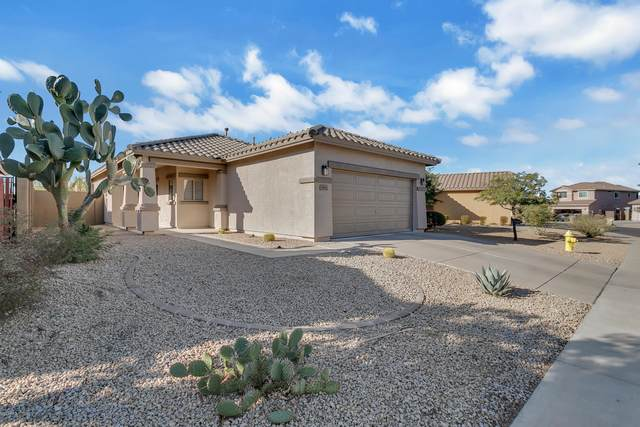 3419 W Steinbeck Drive, Anthem, AZ 85086 (MLS #6167020) :: My Home Group