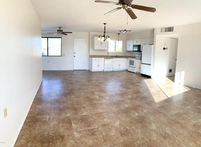 10531 W Connecticut Avenue, Sun City, AZ 85351 (MLS #6167026) :: Yost Realty Group at RE/MAX Casa Grande