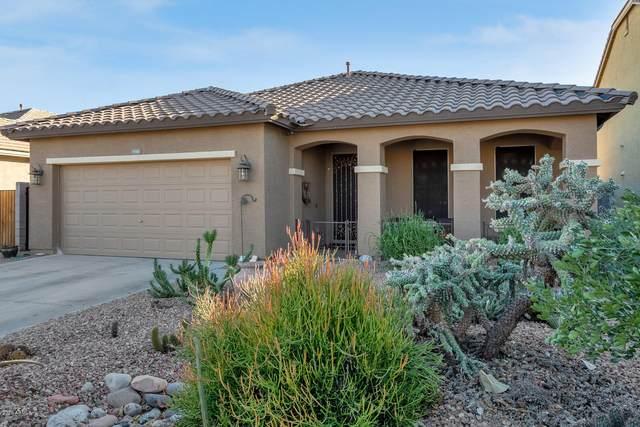 1193 W Desert Glen Drive, San Tan Valley, AZ 85143 (MLS #6167029) :: Yost Realty Group at RE/MAX Casa Grande