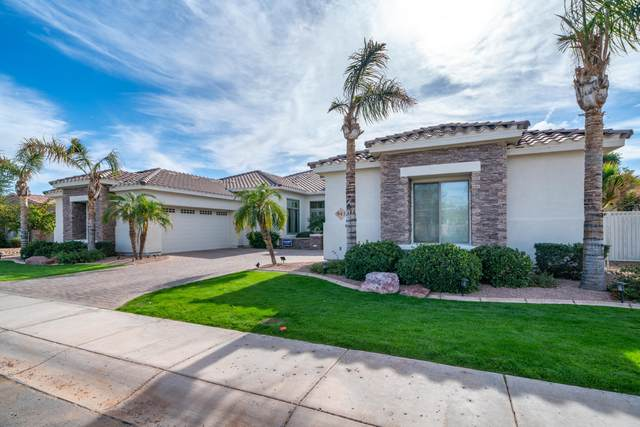 943 E Coconino Place, Chandler, AZ 85249 (MLS #6167038) :: Long Realty West Valley