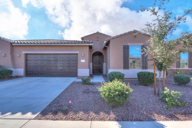 41615 W Monsoon Lane, Maricopa, AZ 85138 (MLS #6167039) :: Long Realty West Valley