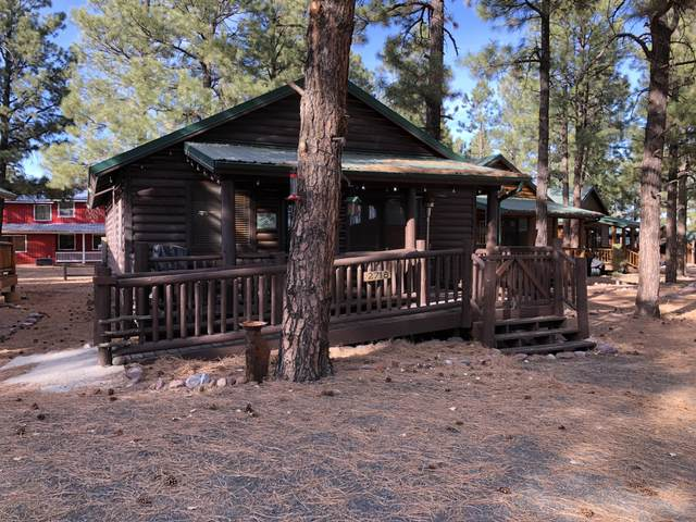 2718 High Pine Loop, Overgaard, AZ 85933 (MLS #6167106) :: The Riddle Group