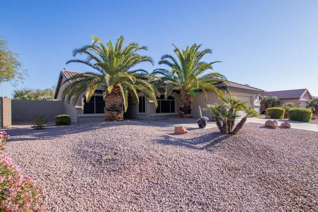 14892 W Piccadilly Road, Goodyear, AZ 85395 (MLS #6167213) :: Sheli Stoddart Team | M.A.Z. Realty Professionals