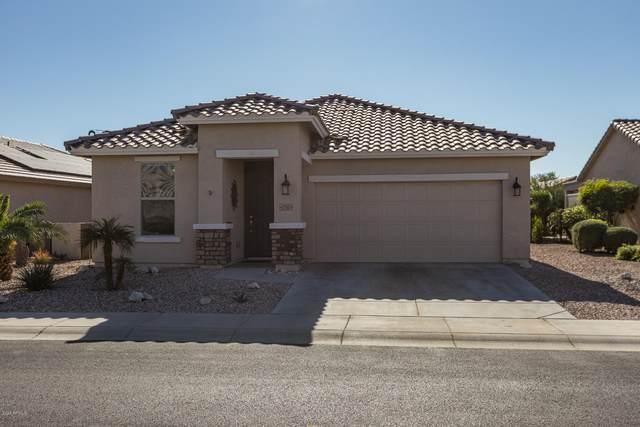 22587 W Loma Linda Boulevard, Buckeye, AZ 85326 (MLS #6167222) :: CANAM Realty Group
