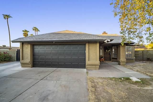 3362 W Irma Lane, Phoenix, AZ 85027 (MLS #6167267) :: Homehelper Consultants