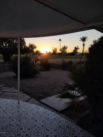 10938 W Tropicana Circle, Sun City, AZ 85351 (MLS #6167325) :: Homehelper Consultants